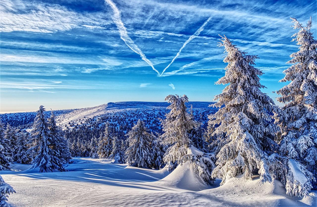 Bilder Tschechische Republik Berg Natur Winter Fichten Himmel Schnee Wälder Landschaftsfotografie Bäume Gebirge Wald