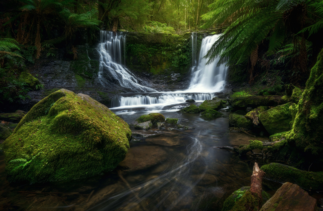 Pictures Australia Mount Field National Park Nature Waterfalls Parks Moss stone park Stones