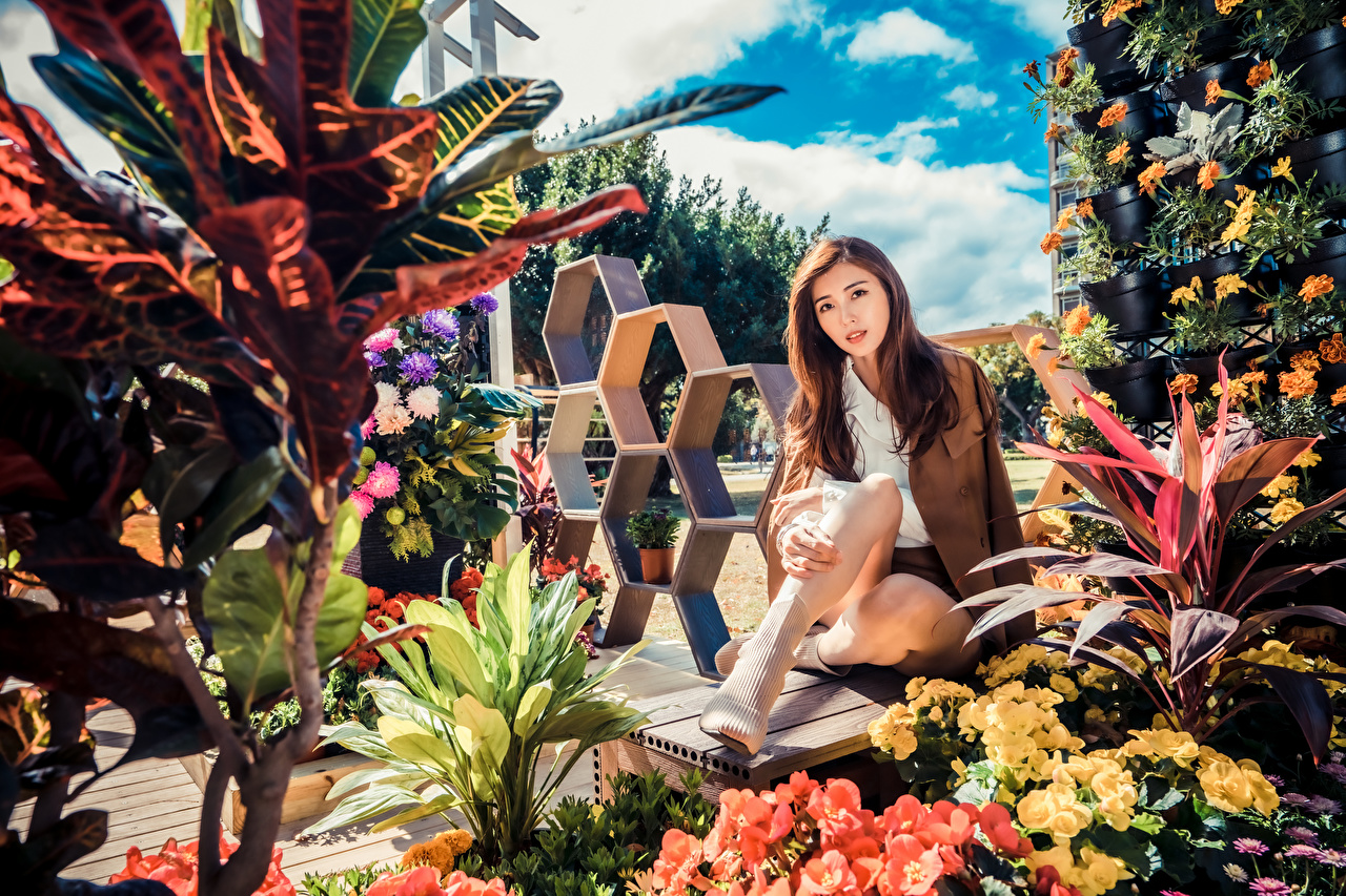 Image Brown haired Girls Asian sit Glance female young woman Asiatic Sitting Staring