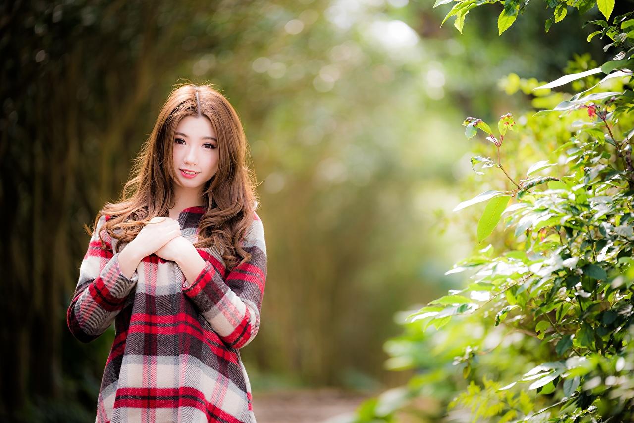 Bilder Braune Haare Bokeh junge frau Asiatische Hand Blick Braunhaarige unscharfer Hintergrund Mädchens junge Frauen Asiaten asiatisches Starren