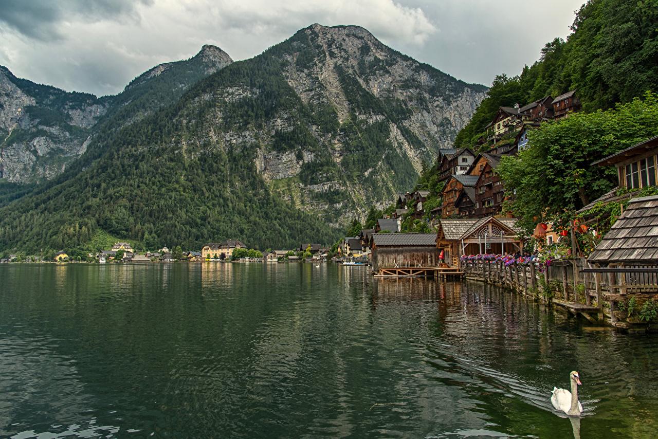 Image Hallstatt Alps Austria Mountains Lake Cities mountain