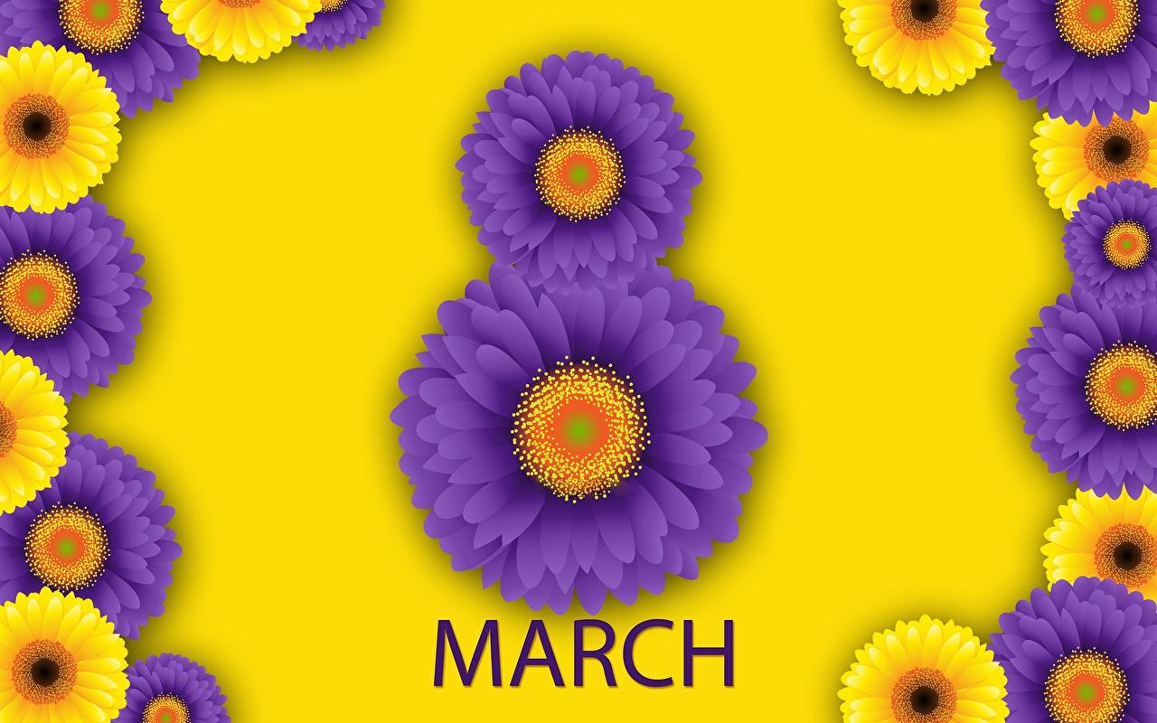Hintergrundbilder 8 März englisches Gerbera Blüte Internationaler Frauentag Englisch englische englischer Blumen