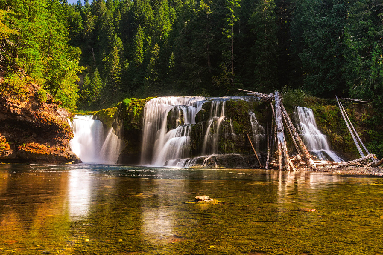 Pictures USA Lower Lewis River Falls Nature Waterfalls Forests Rivers forest river