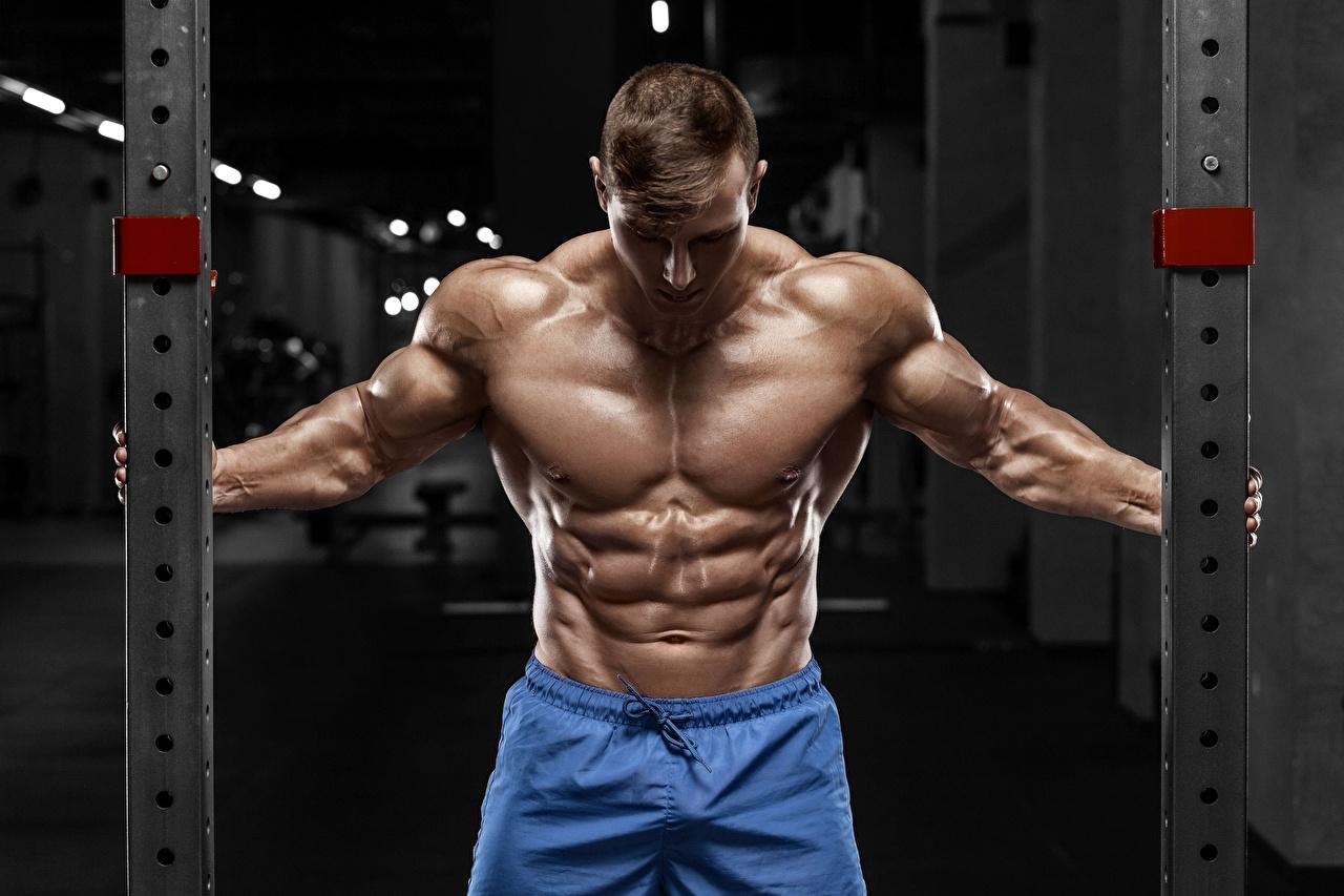 Bilder von Mann Muskeln posiert sportliches Bodybuilding Bauch Pose Sport