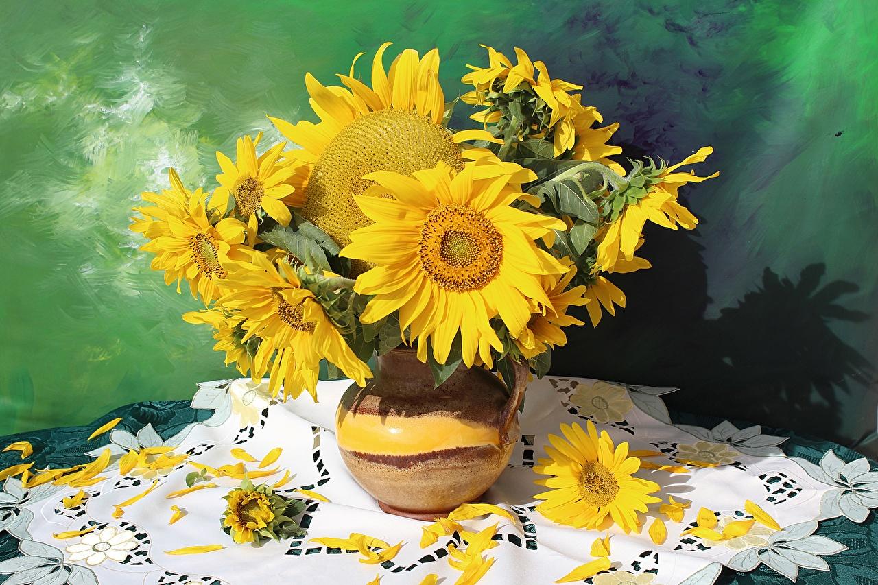 Desktop Wallpapers bouquet Flowers Helianthus Vase Bouquets flower Sunflowers