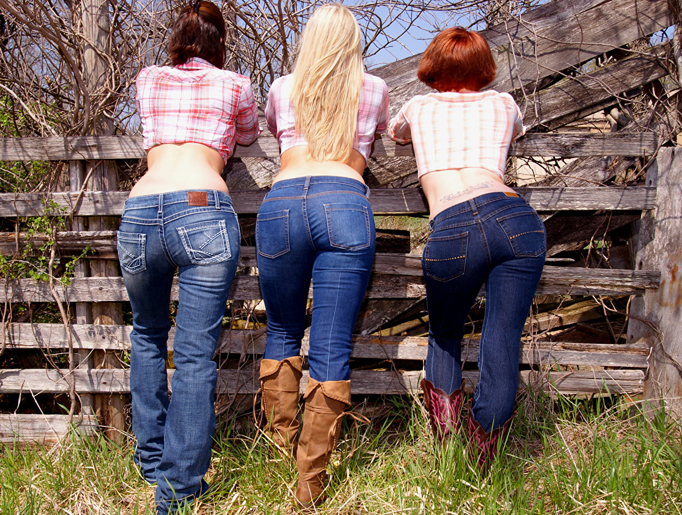Image Ass buttocks Blonde girl Redhead girl Wearing boots Human back young woman Legs Fence Jeans Three 3 Back view Girls female