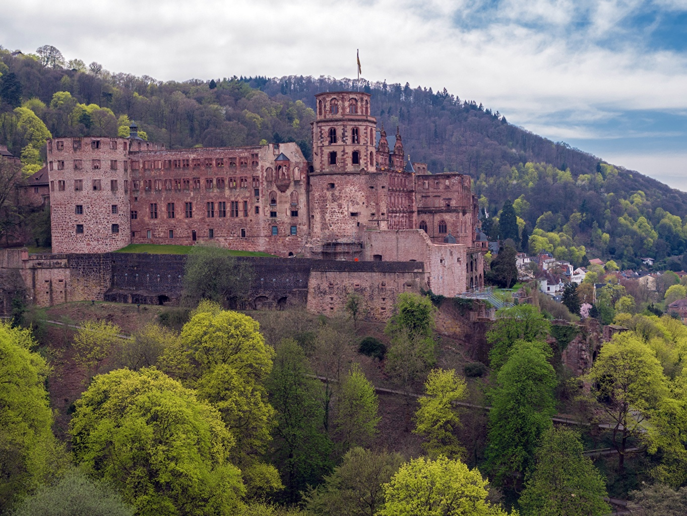 Pictures Germany castle forest Cities Castles Forests
