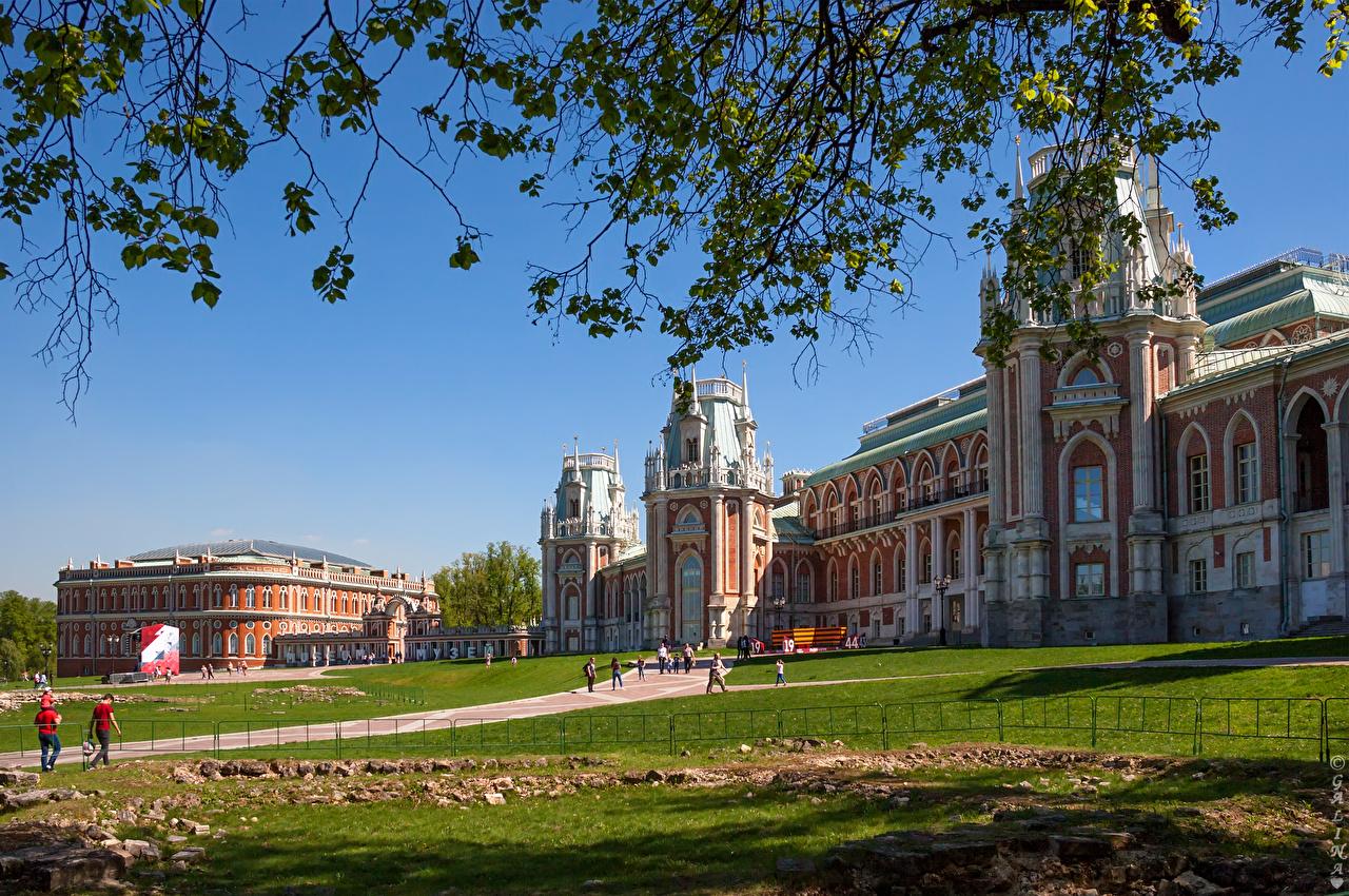 Immagine Mosca Palazzo Russia musei Tsaritsyno parchi Erba di ramo Città Museo Parco Rami