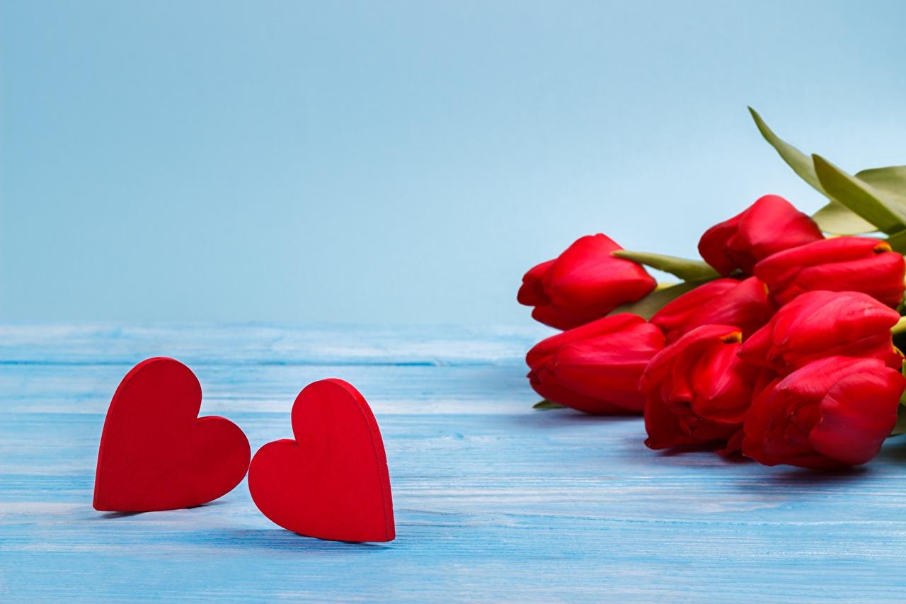 Desktop Hintergrundbilder Valentinstag Herz Blüte Vorlage Grußkarte Blumen