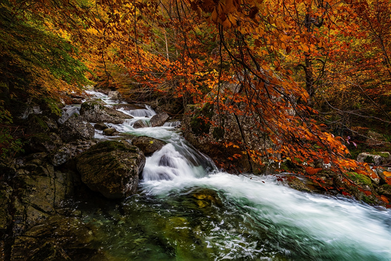 Pictures Spain Aragon, Salenques River, Posets-Maladeta Natural Park Nature Autumn Forests Stones Rivers Trees forest stone river