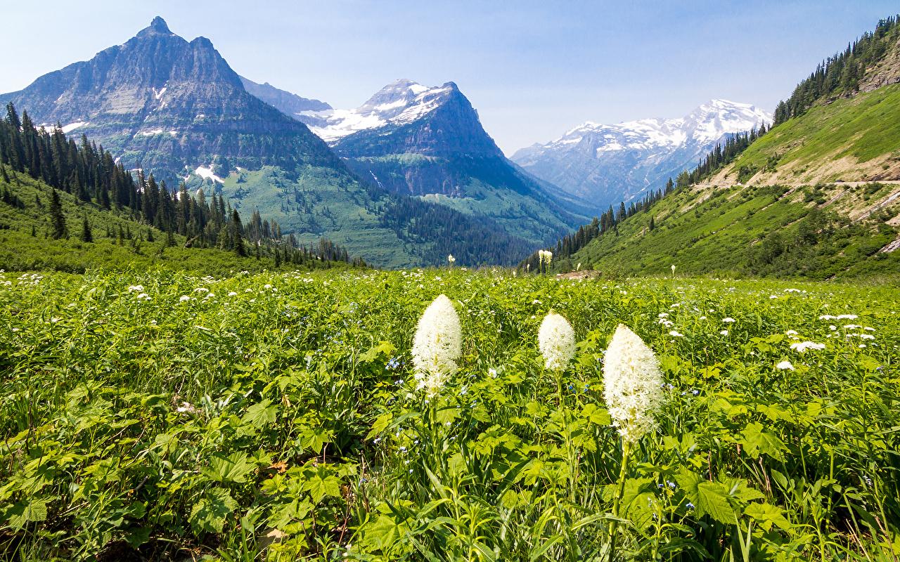 Fonds D Ecran Printemps Montagnes Photographie De Paysage Herbe Nature Telecharger Photo