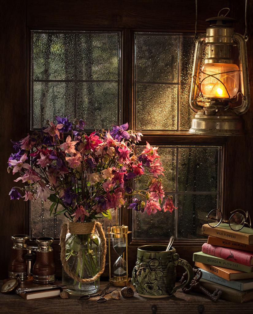 Natureza-morta Lâmpada de querosene Buquê Ampulheta Aquilegia Vaso Chávena Livro Óculos Janela flor, buquês, lampião a querosene, Lunettes, livros Flores para celular Telemóvel