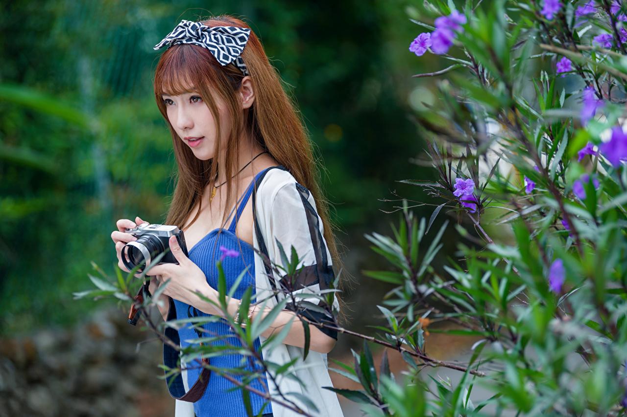 Foto Braunhaarige Fotoapparat Bokeh junge frau Asiaten Ast Starren Braune Haare unscharfer Hintergrund Mädchens junge Frauen Asiatische asiatisches Blick