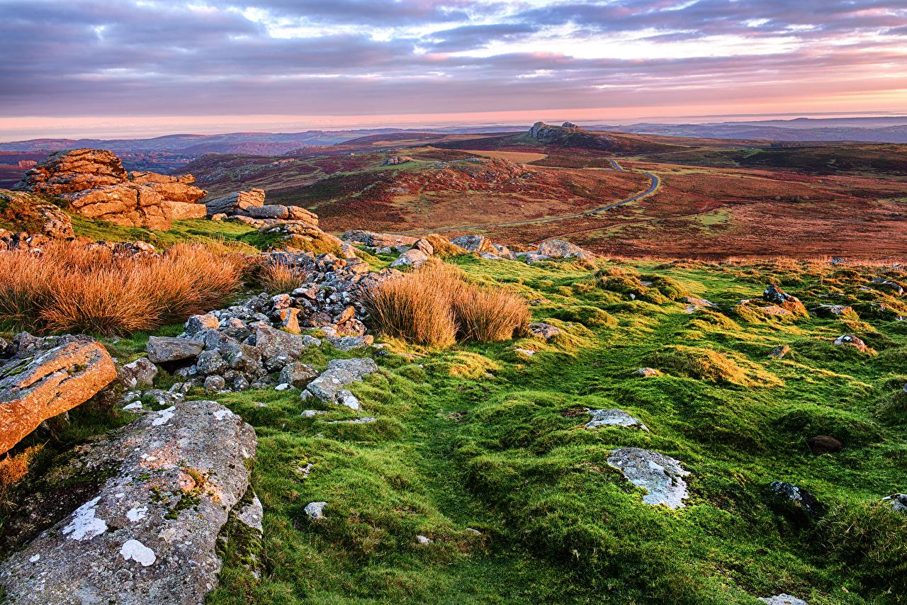 Image England Teignbridge Nature Hill Scenery stone Grass landscape photography Stones