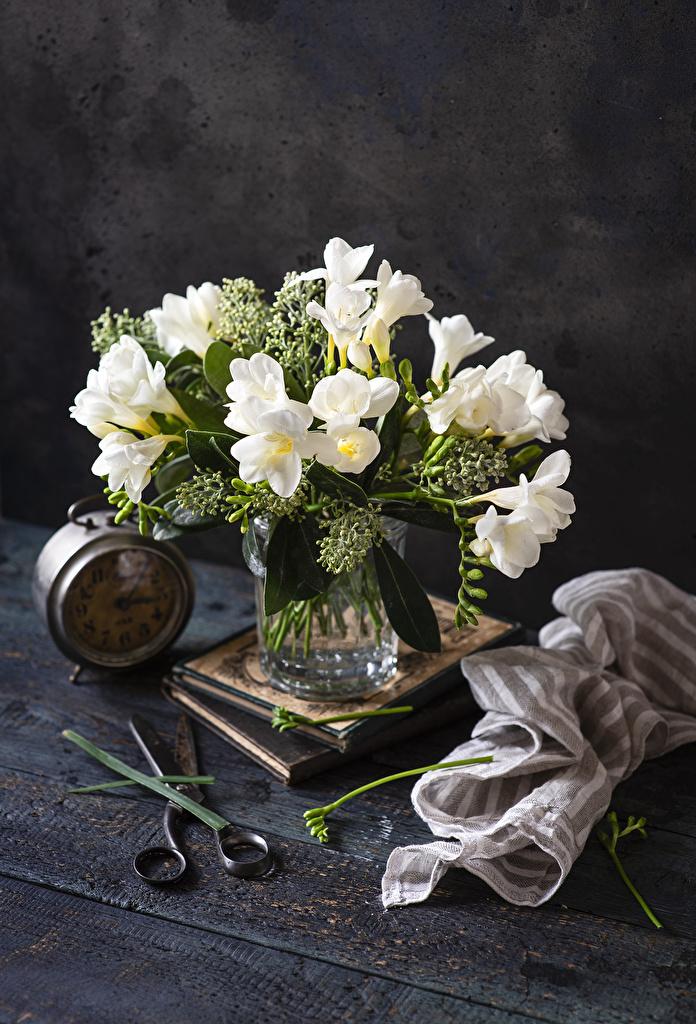 Bilder Uhr Weiß Blüte Freesie Vase  für Handy Blumen Freesien