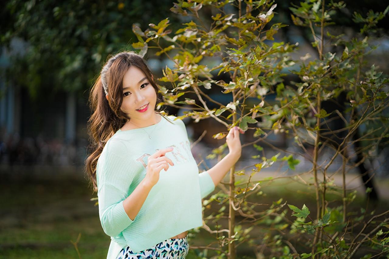 Fotos von Braunhaarige Lächeln Bokeh junge frau Asiatische Ast Hand Blick Braune Haare unscharfer Hintergrund Mädchens junge Frauen Asiaten asiatisches Starren