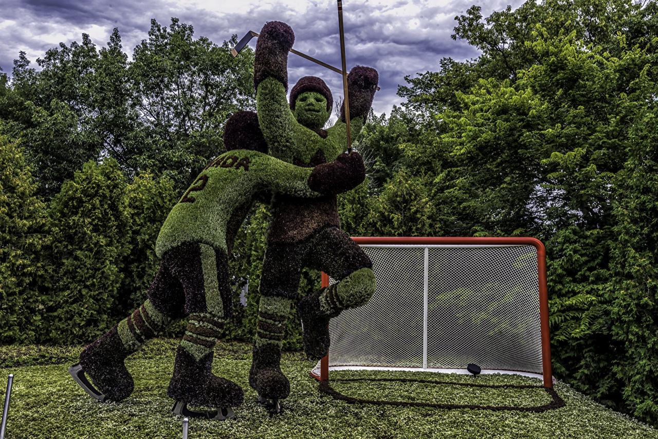 Foto Kanada Mann Ottawa Ontario Zwei Natur Park Hockey Design 2