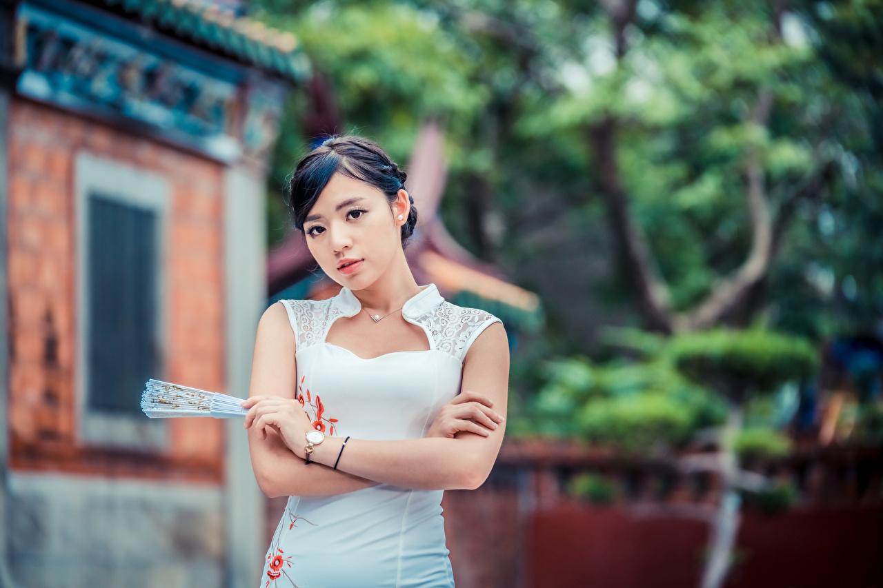 Afbeeldingen onscherpe achtergrond Waaier Jonge vrouwen Aziaten Handen Kijkt Jurk Bokeh jonge vrouw aziatisch hand