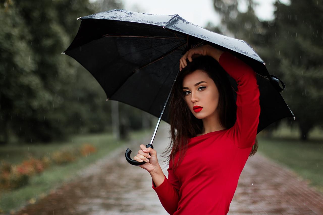 Images Brunette girl Girls Rain Umbrella Glance female young woman parasol Staring