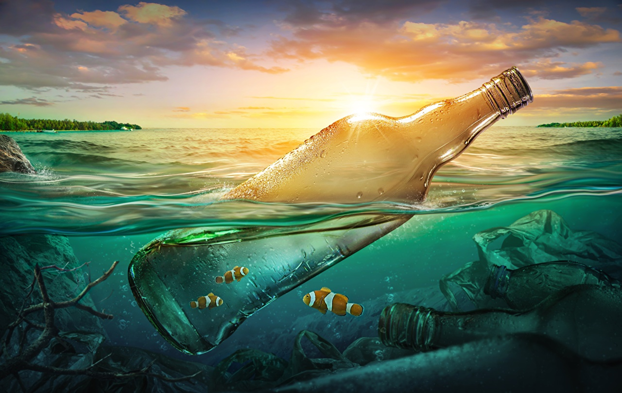 Pictures Fish Nature Water Bottle rubbish Trash bottles