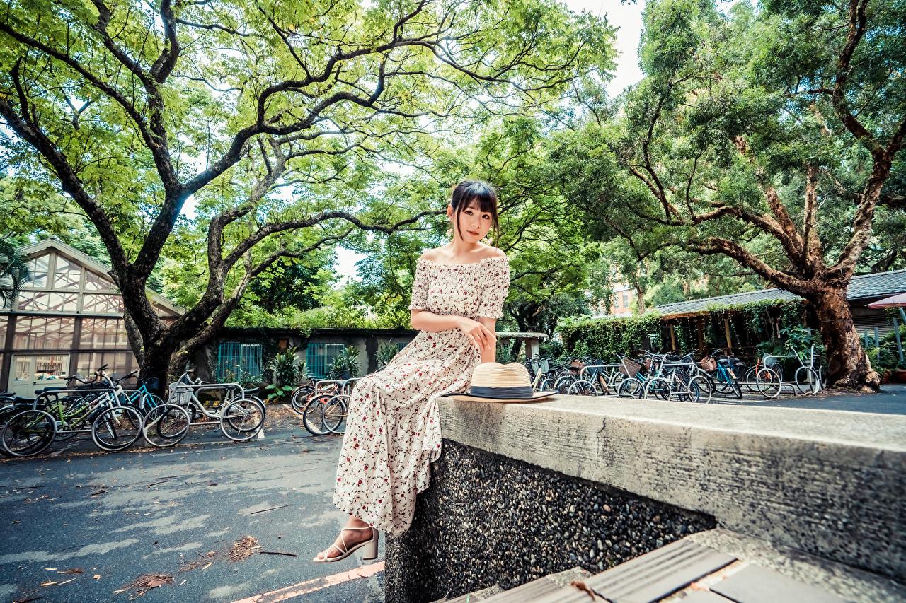Fotos Der Hut Mädchens asiatisches Sitzend Blick Kleid junge frau junge Frauen Asiaten Asiatische sitzt sitzen Starren