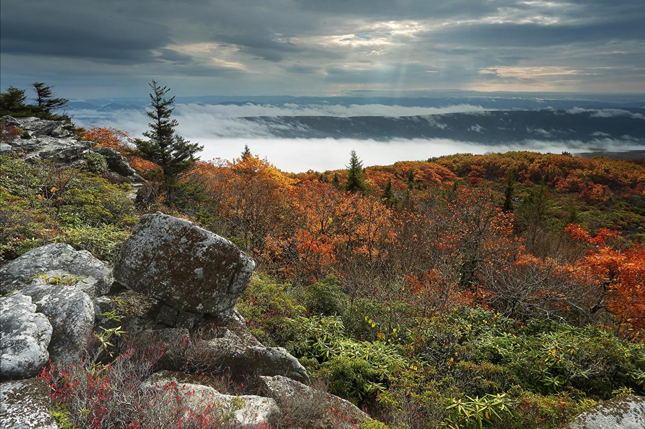 壁紙 美国 石 秋季 風景攝影 West Virginia 丘 灌木 大自然 下载 照片