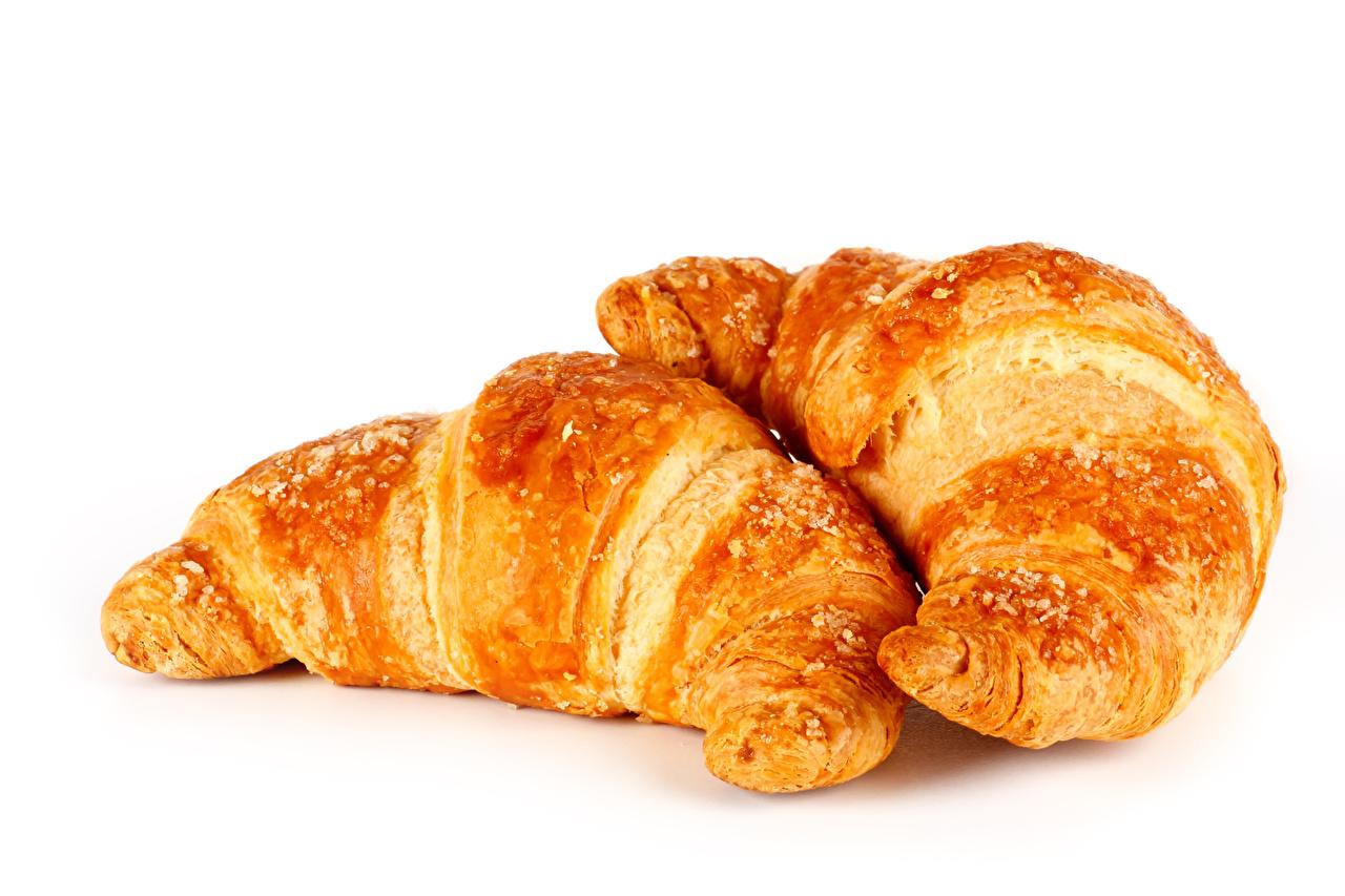 Bilder von Zwei Croissant Lebensmittel hautnah Weißer hintergrund 2 das Essen Nahaufnahme Großansicht