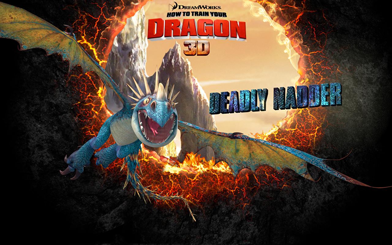 Bilder von Drachenzähmen leicht gemacht Drache Zeichentrickfilm 1280x800 Animationsfilm