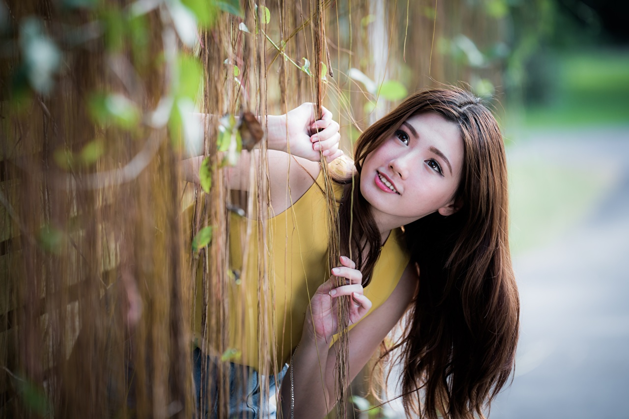 Photos Brown haired Bokeh Hair young woman Asian Hands Glance blurred background Girls female Asiatic Staring