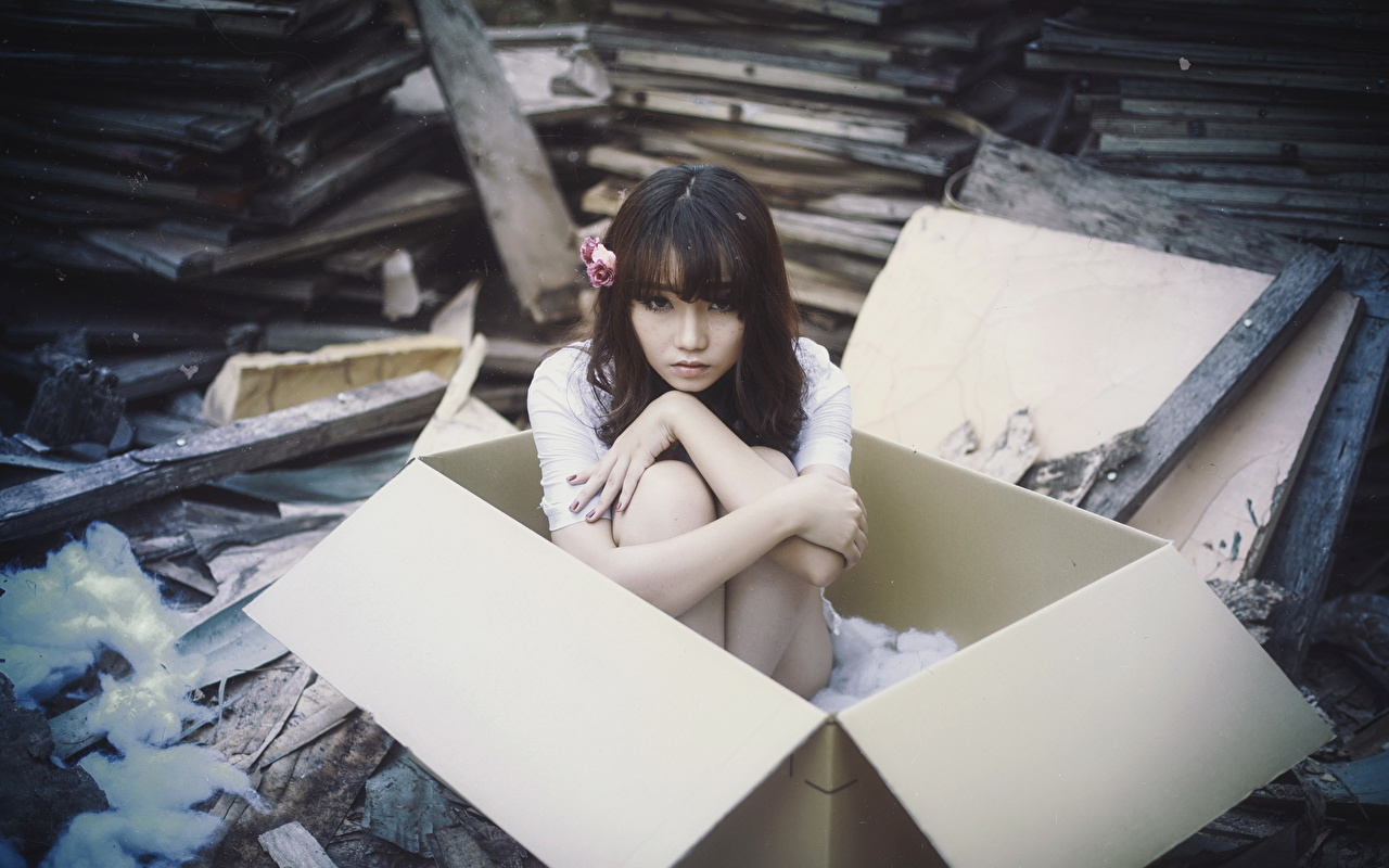 Images female Box Asian Sitting Girls young woman Asiatic sit