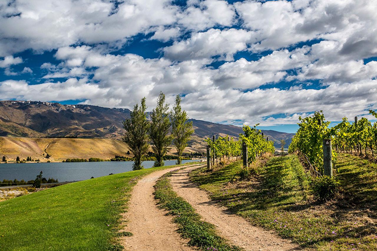Immagine Nuova Zelanda Natura Cielo Strade Paesaggio Campo agricolo Fiumi Nubi Cespugli fiume Nuvole Arbusti
