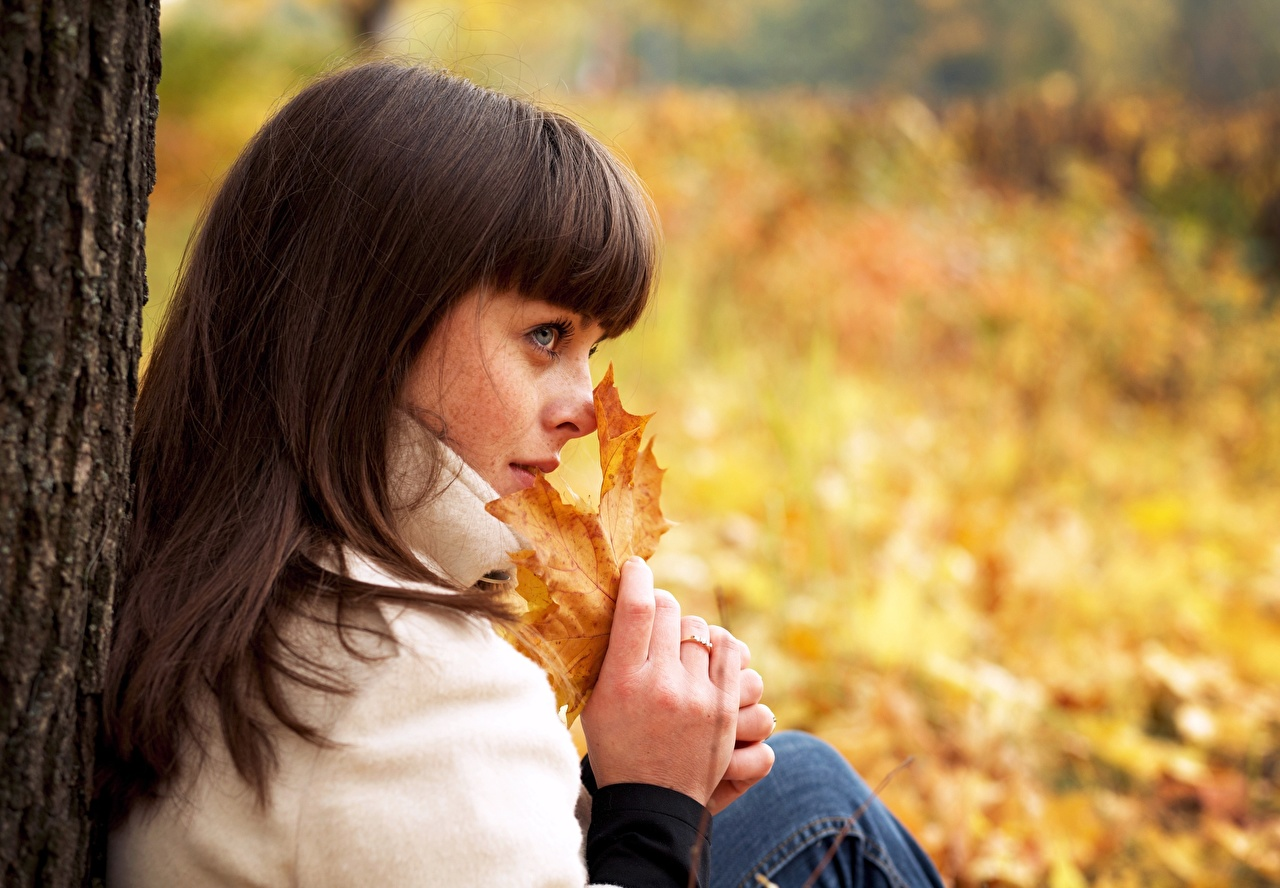 Images Foliage Brown haired Bokeh Autumn female Hands Glance Leaf blurred background Girls young woman Staring