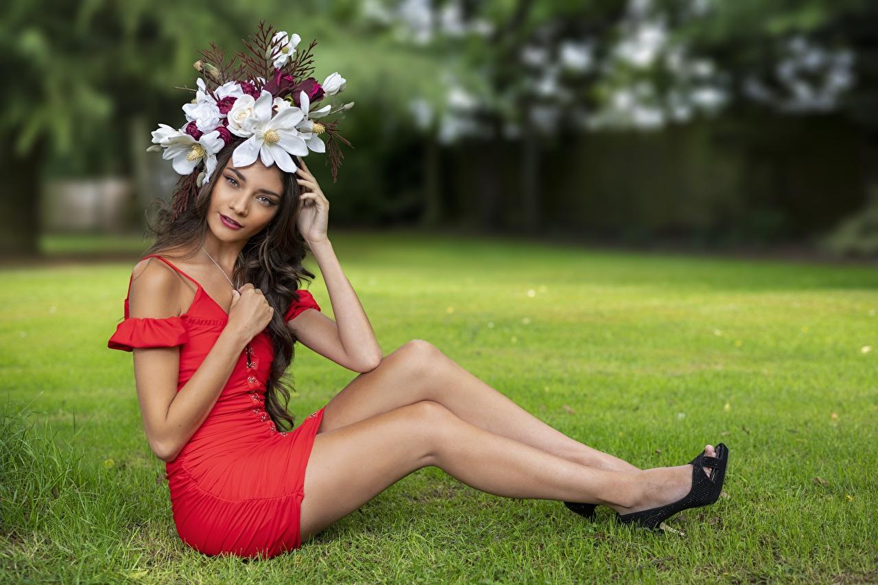 Desktop Hintergrundbilder Elle Kranz junge frau Bein Gras sitzt Blick Kleid Mädchens junge Frauen sitzen Sitzend Starren