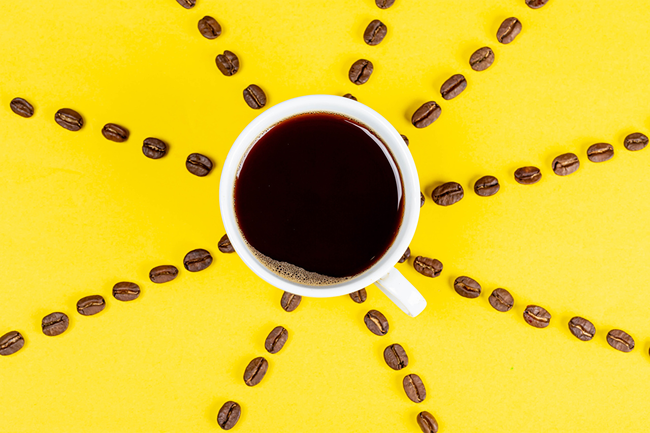 Wallpaper Coffee Grain Cup Food From above Colored background