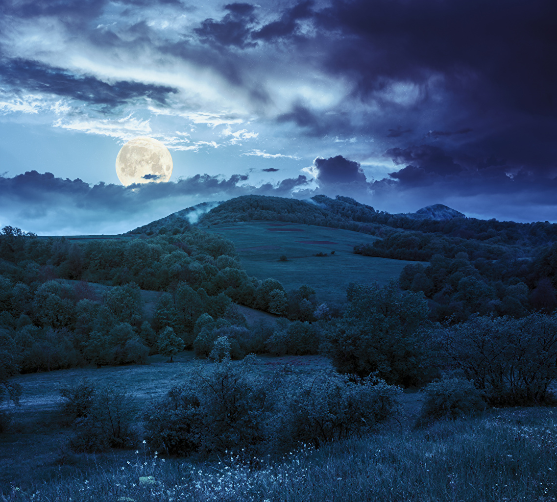 Bilder von Natur Mond Hügel Himmel Gras Nacht Wolke Strauch