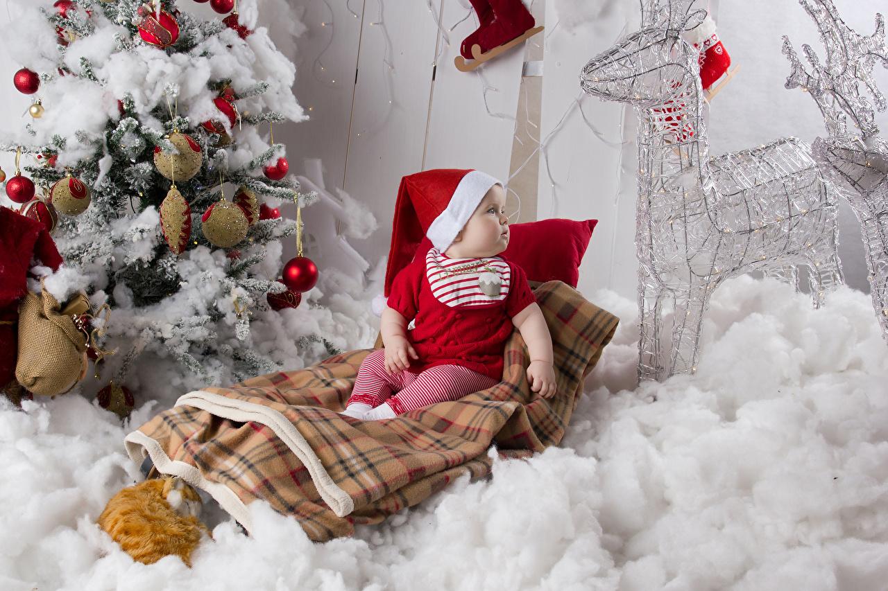 Desktop Wallpapers Deer Baby New year Children Winter hat Christmas tree Balls Infants newborn Christmas child New Year tree
