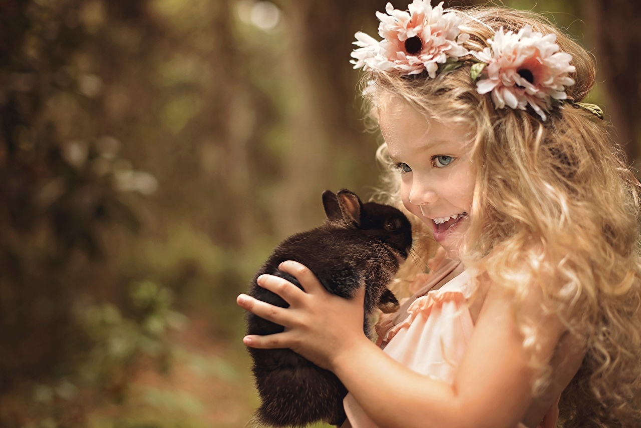 Image Little girls rabbit Smile child Hair Wreath Hands Staring Rabbits Children Glance
