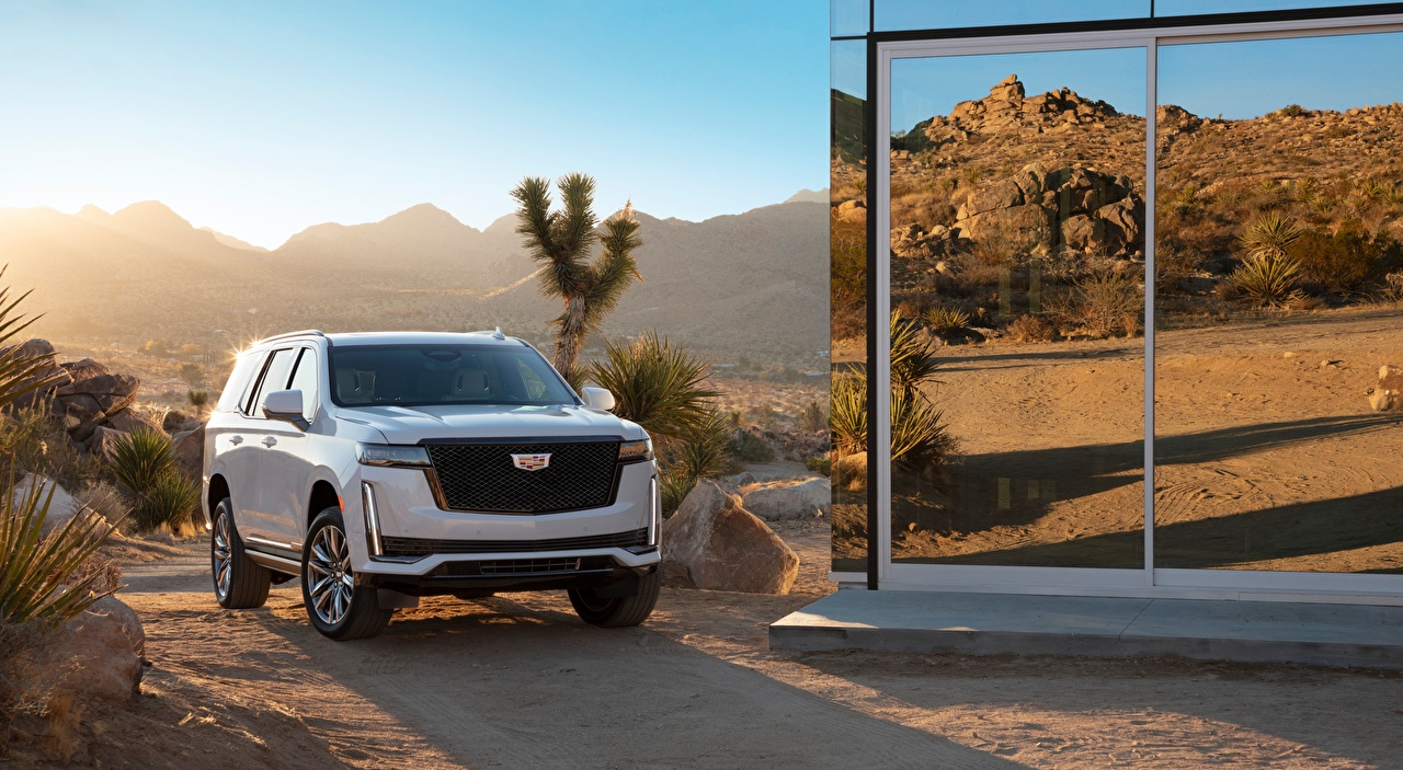 Wallpaper Cadillac SUV Escalade, Platinum Sport, 2020 White Front automobile Sport utility vehicle Cars auto