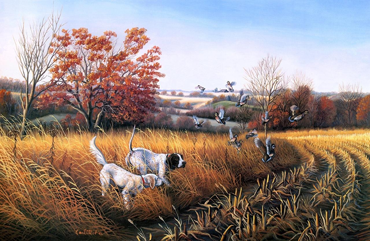Fonds D Ecran Peinture Dessine Chien Automne John S