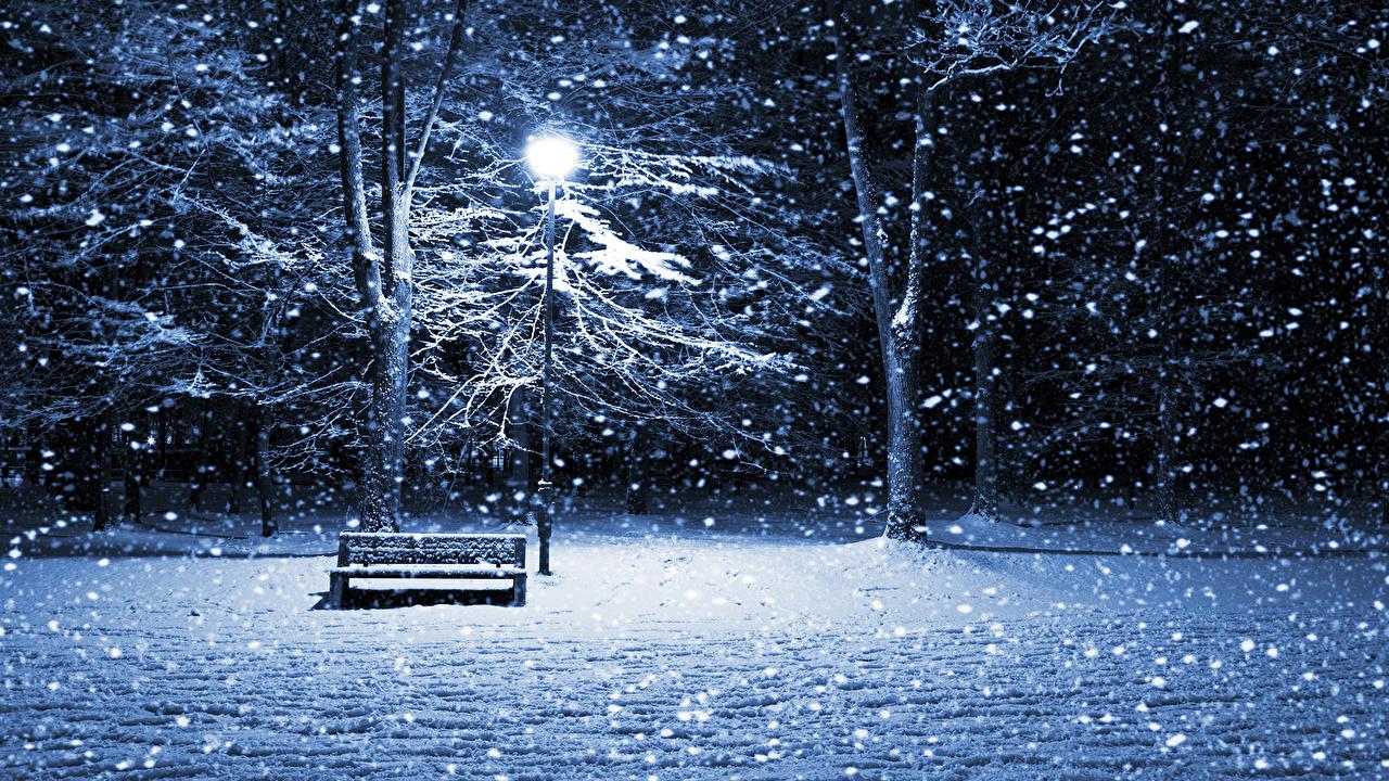 、季節、冬、雪、ベンチ、街灯、自然、