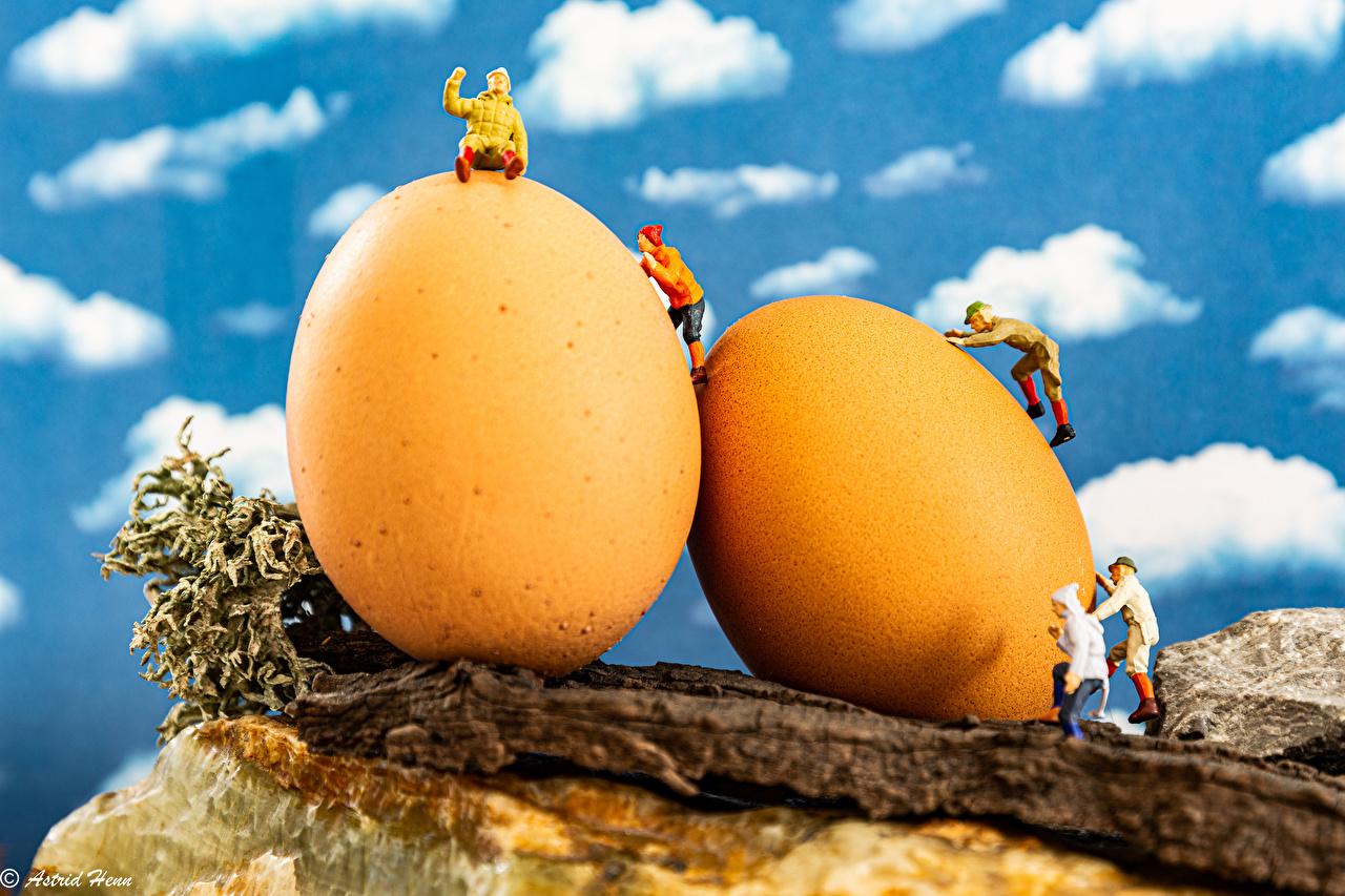 zdjęcia Wielkanoc Mężczyźni Jajka dwóch Żółty Rzeźbiarstwo mężczyzna Jajko dwie Dwa 2 dwoje
