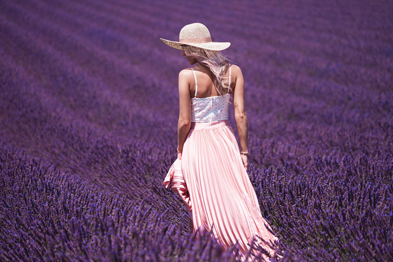 Fotos Der Hut junge frau Felder Lavendel Hinten Mädchens junge Frauen Acker