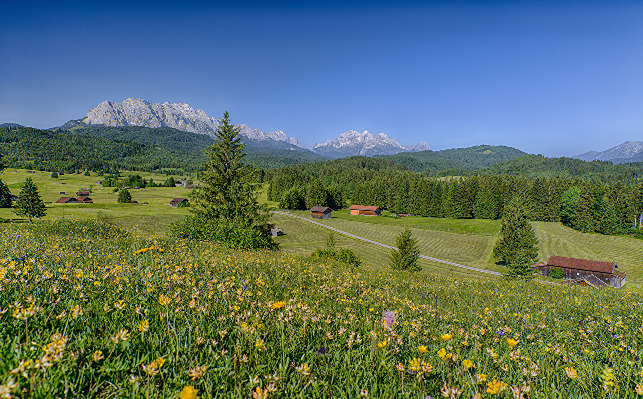 Image Bavaria Alps Germany Nature Summer Mountains Scenery Grasslands mountain Meadow landscape photography