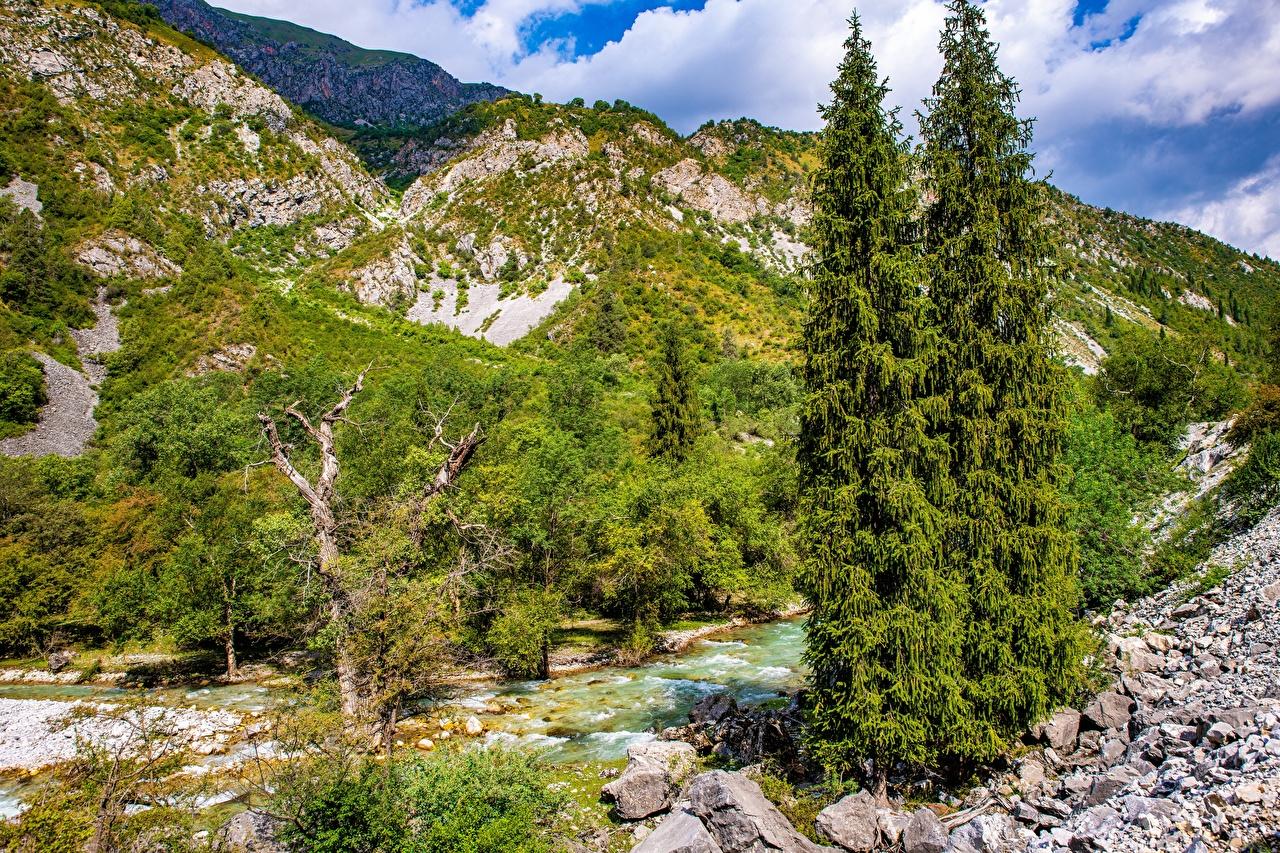 Bilder Kara-Kamysh, Kyrgyzstan Natur Gebirge Flusse Steine Bäume Berg Fluss Stein