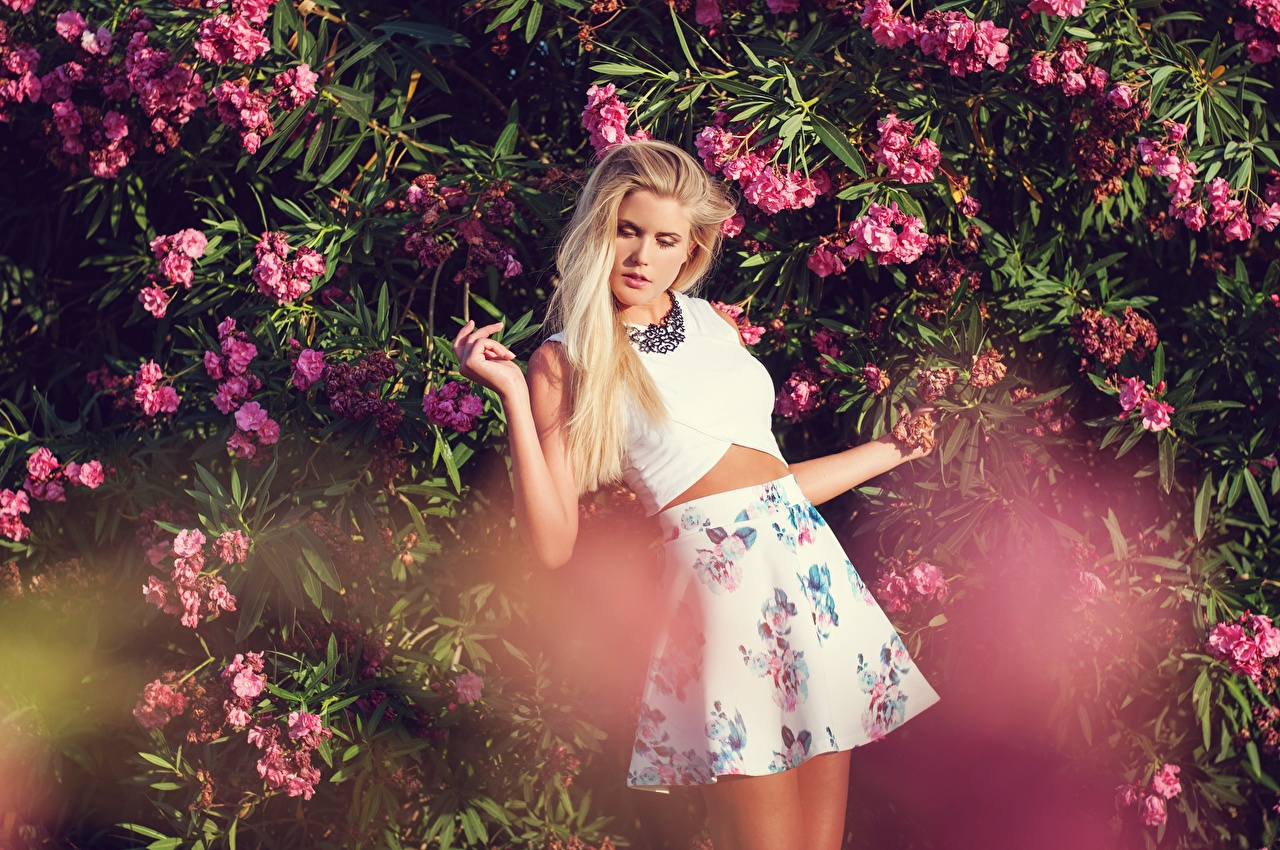 Images Skirt Blonde girl Pose Girls Hands Bush posing female young woman Shrubs