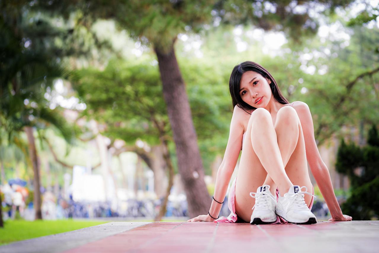 Fotos von unscharfer Hintergrund Mädchens Bein asiatisches Sitzend Starren Bokeh junge frau junge Frauen Asiaten Asiatische sitzt sitzen Blick