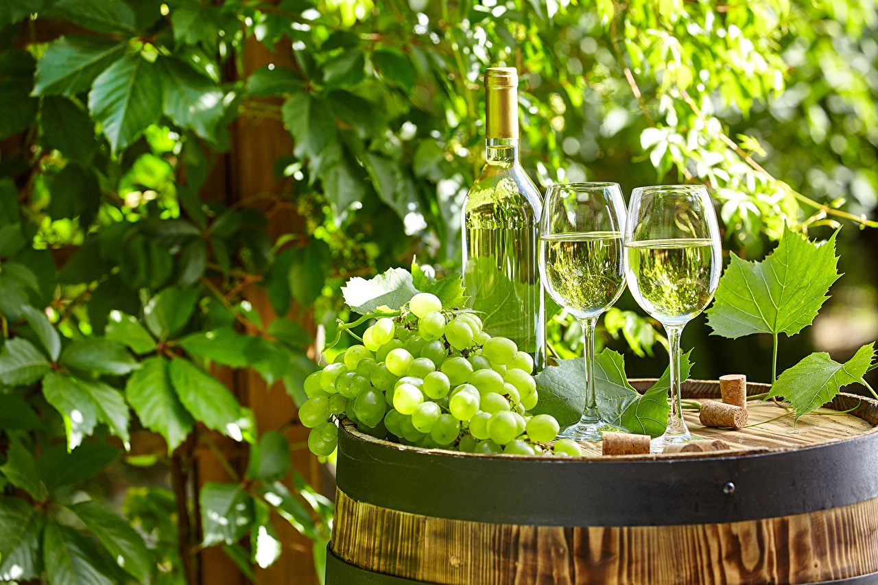 Photo 2 Wine Grapes Barrel Food Bottle Stemware Two cask bottles