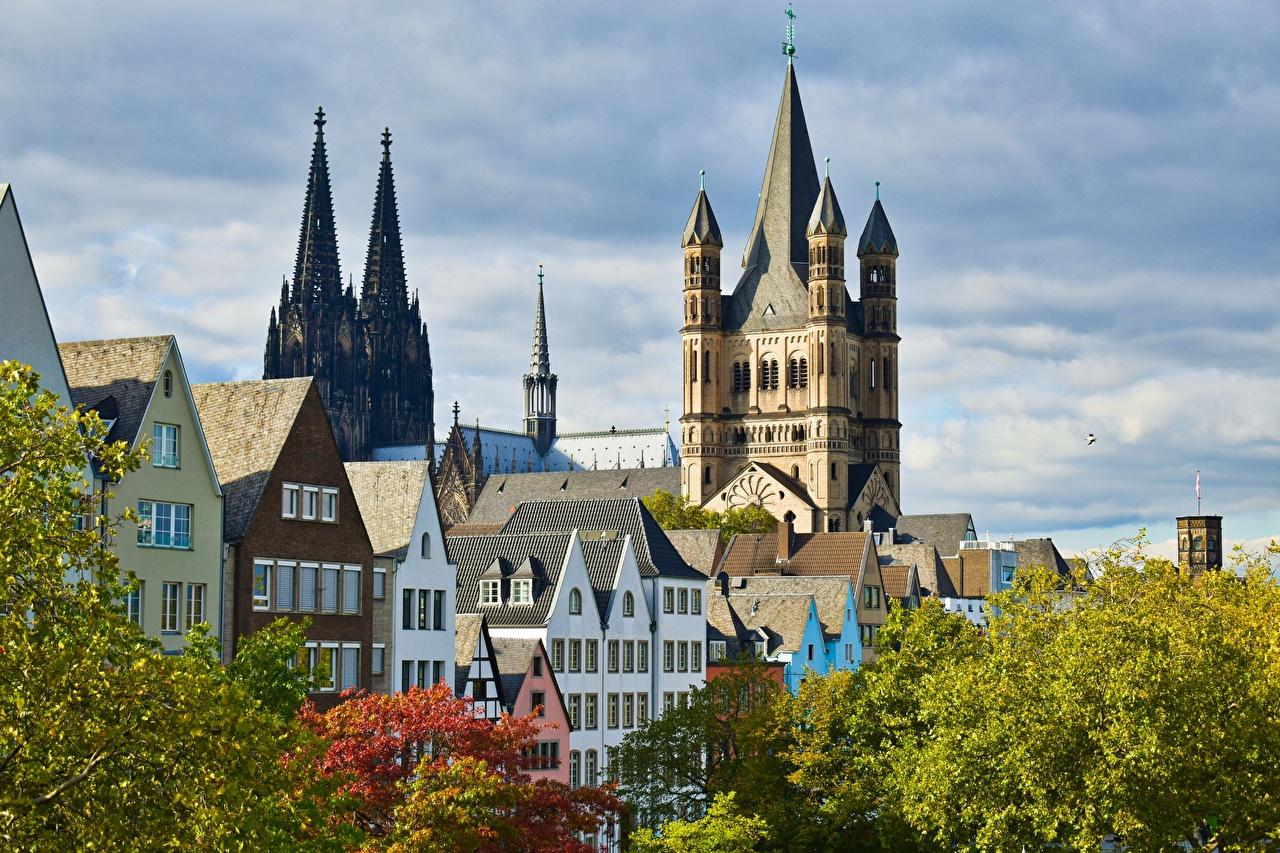Фото Кёльн Собор Германия Cologne Cathedral осенние Здания Города Осень Дома город