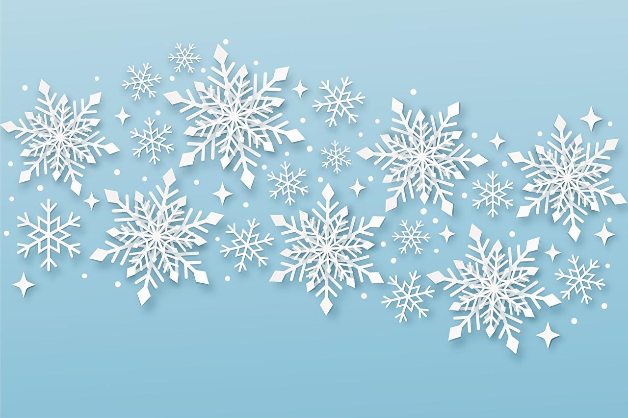Bilder Neujahr Natur Schneeflocken