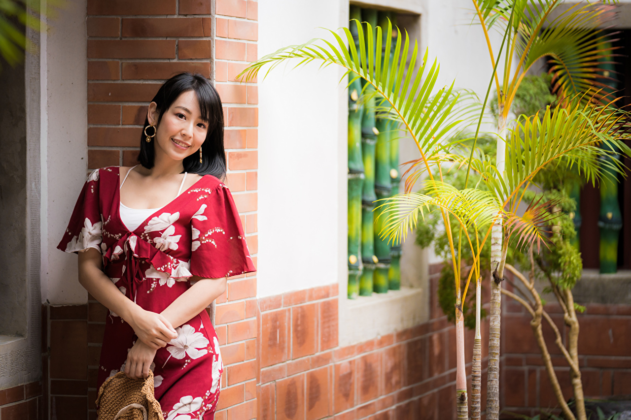 Photo Brunette girl Smile Girls Asiatic Staring gown female young woman Asian Glance frock Dress